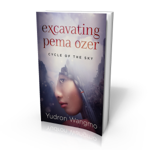 Excavating Pema Ozer - 3D