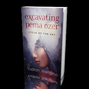 Excavating Pema Ozer - 3D